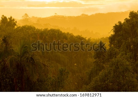 Bright sun breaks through rain clouds during heavy monsoon rain over forest and lights the terrain with an eerie orange glow