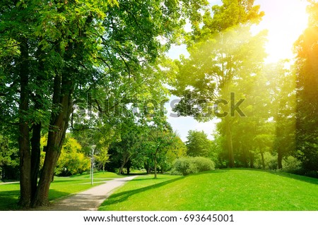 Bright sunny day in park. The sun rays illuminate green grass and trees. - Shutterstock ID 693645001