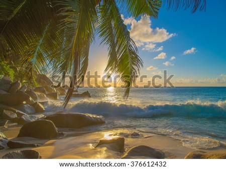 Bright sunset on sandy tropical palm beach with large granitic boulders, Anse Georgette, Praslin island, Seychelles, nature background