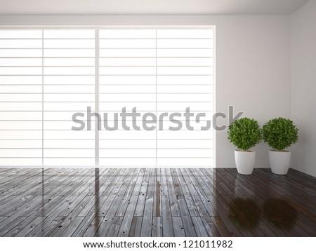 bright window and wooden floor