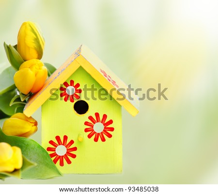 Bright wooden nestbox and yellow tulips, over white