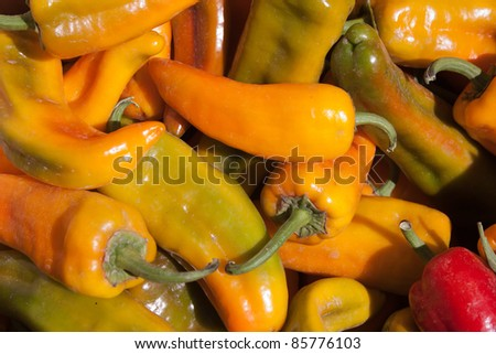 Bright Yellow Peppers for Background Use