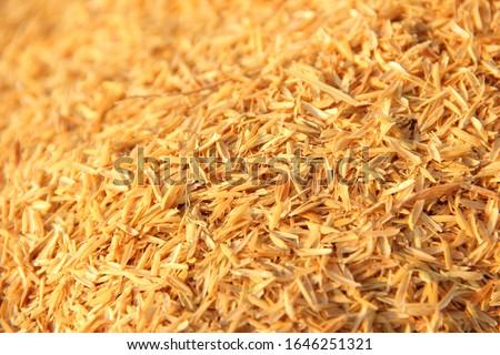 Bright yellow rice husk like a small mountain, rice husk background Beautiful yellow. rice husk texture. Stock photo ©