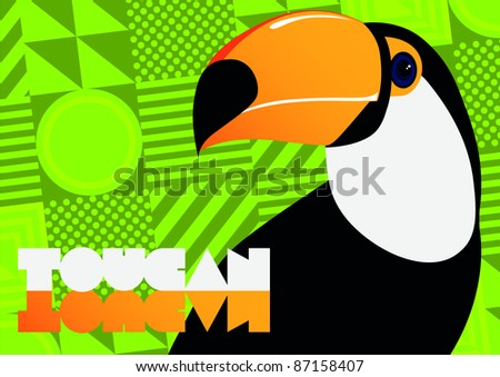 Brightly illustrated toucan - rasterized file