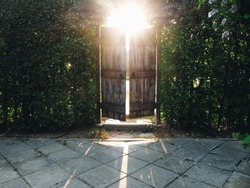 Brightness sunlight shine through the old wooden door in the morning