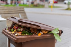 Brimful municipal bio-waste trash can with open lid for biological organic waste standing on open street in residential area after christmas holidaysv
