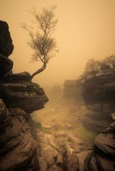 Brimham Rocks in the Mist, North Yorkshire