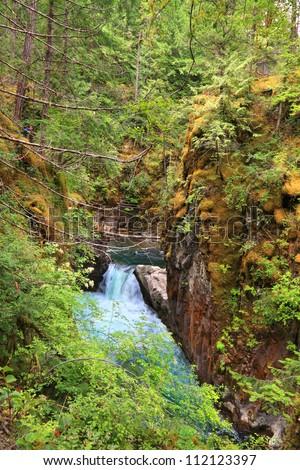 British Columbia canyon's falls in National Park. BC, Canada