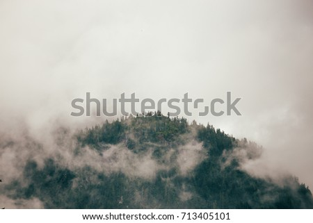 British columbia mountain covered with trees surrounded by mist and fog.  #713405101