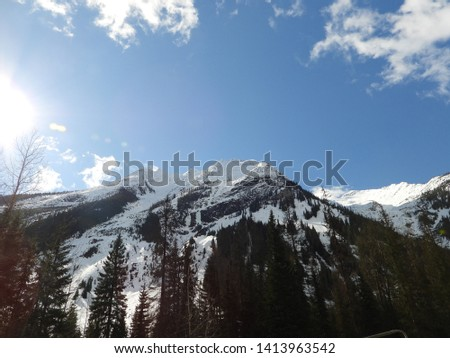 British Columbia Mountains Forests Roads #1413963542