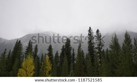 British Columbia Roads and Mountains #1187521585