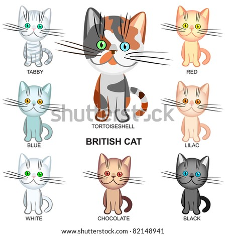 Cats In Various Colours Free Stock