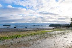 Brittany, Ile aux Moines island in the Morbihan gulf, and the Port-Miquel beach at low tide