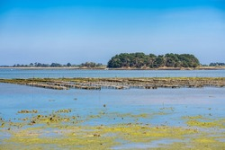 Brittany, panorama of the Morbihan gulf, view from the Ile aux Moines island, with an oyster ship