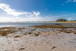 Brittany, panorama of the Morbihan gulf, view from the Ile aux Moines, small island at low tide