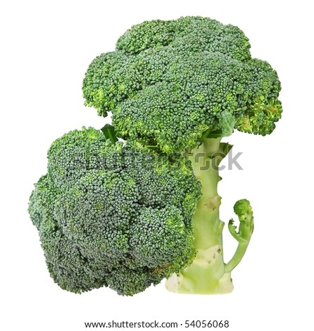 Broccoli Cabbage isolated on white .