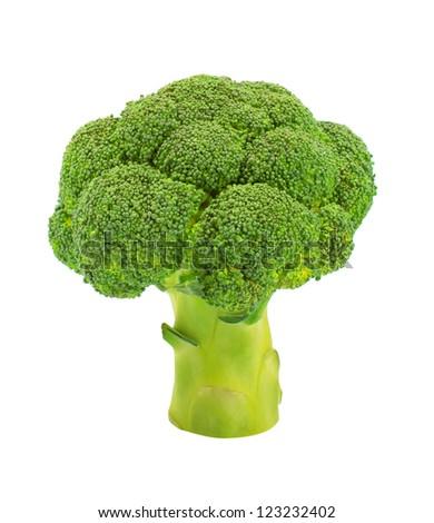 Broccoli floret isolated on white background
