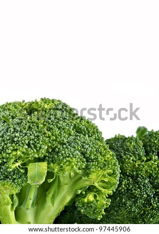 Broccoli Isolated on White Background. White Background Copy Space with Fresh Raw Broccoli on the Bottom.