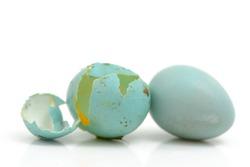 Broken Blue Eggs