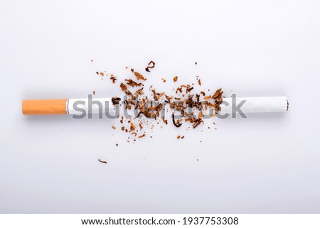 Broken cigarette on white background , World No Tobacco Day Tobacco and lung health concept . Stock photo ©