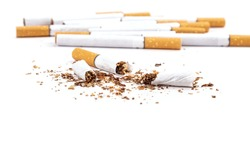 broken cigarettes isolated on white background, stop smoking closeup.