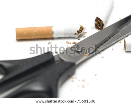 broken cigarettes with scissors isolated on white background