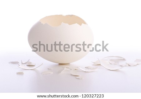 Broken egg isolated on the white