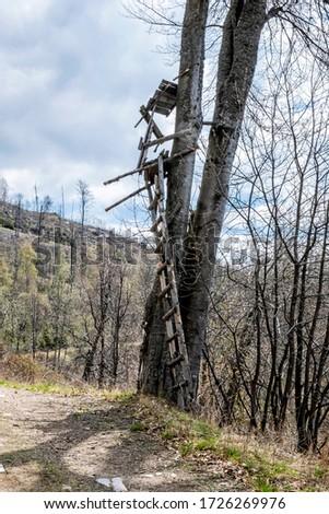 Broken hunting stand, Stolica mountains, Slovak republic. Hiking theme. Zdjęcia stock ©