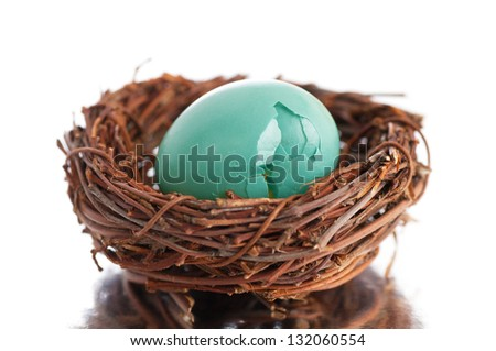 Broken Robin's Egg in Nest on Reflective Surface with White Background