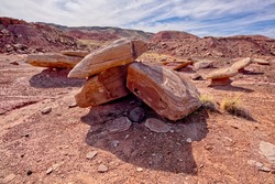 Broken Stones below Kachina Point in Petrified Forest National Park that may have been a tall Hoodoo that fell down long ago.