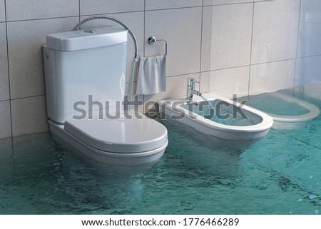 Broken toilet and bidet overflowing. 3d illustration Foto stock ©