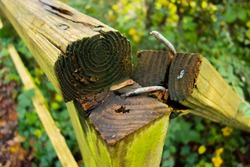 broken wooden hand rail with rusted and bent nails with a natural green background