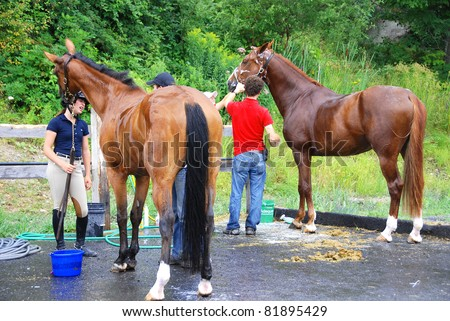 BROMONT-CANADA JULY 29: Unknown riders wash their horse during 2011, INTERNATIONAL BROMONT on July 29, 2011 At the Equestrian 1976 Montreal Olympic Park.
