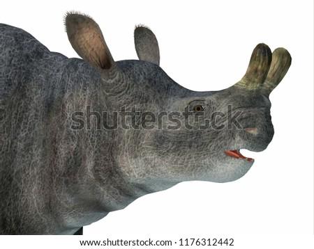 brontotherium mammal head 3d...