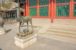 Bronze deer seen from the side in the Summer Palace, the former imperial garden