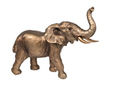 Bronze elephant figurine with a raised trunk isolated on white background