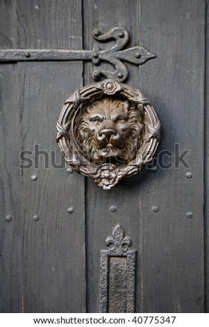 Bronze knocker in the shape of a lion head from the gate