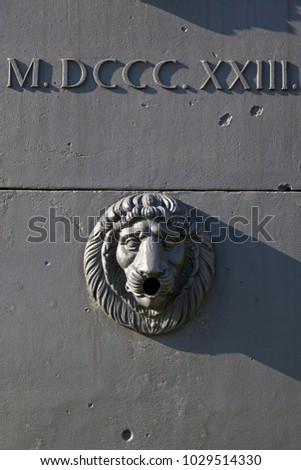 Bronze lion head in Poland