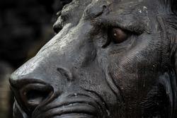 Bronze lion head sculpture in the souvenir shop.