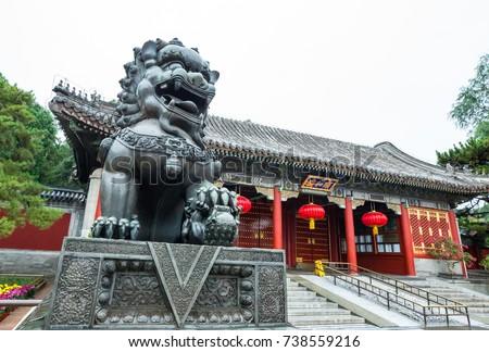 Bronze Lion Statue in Summer Palace, Beijing #738559216