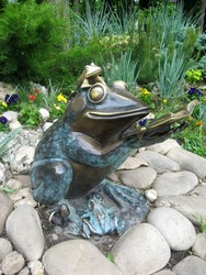 Bronze sculpture frog with a book in the park