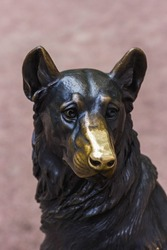 Bronze sculpture of a dog with a polished nose.