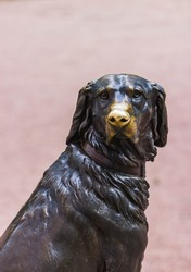 Bronze sculpture of a dog with a polished nose