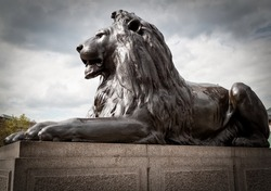 Bronze sculpture of a lion in Trafalgar Square, London on a typical british cloudy day