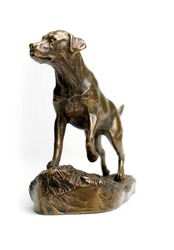 Bronze Statue of Labrador Retriever isolated on white background.