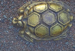 Bronze turtle on colored decorative crushed stone, image of a reptile for background.