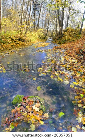 brook in autumn forest