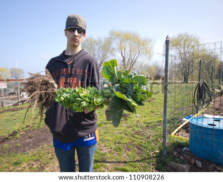 BROOKLYN, NYC - MAR. 18:  Teen displays brussels sprout plant at Floyd Bennett Community Garden in Brooklyn, NY on Mar. 18, 2012. This historic airfield is home to Brooklyn's largest community garden.