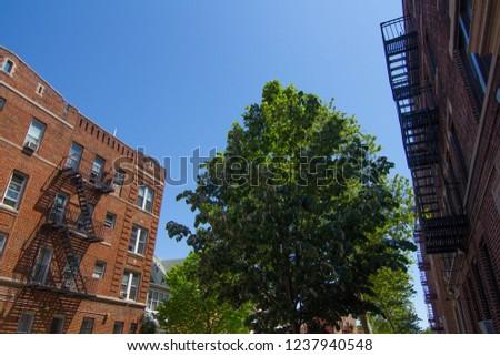 Brooklyn Street Photography