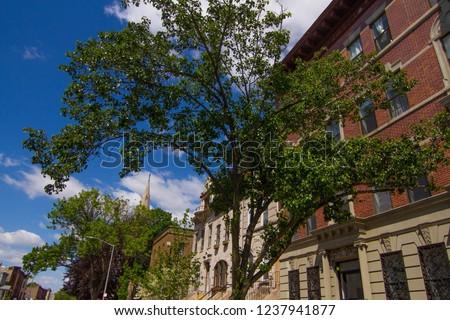 Brooklyn Street Photography #1237941877
